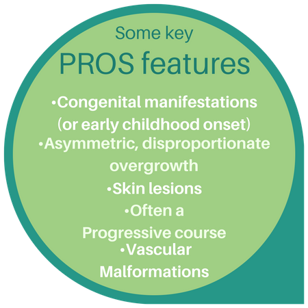 Key PROS-features